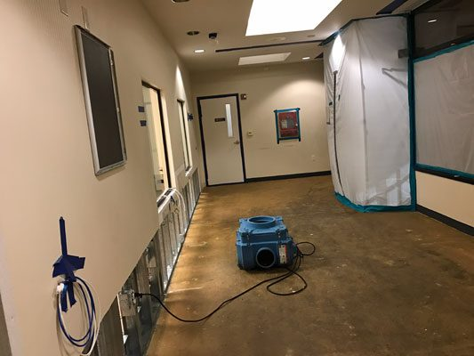 Water Damage Removal and Restoration Services