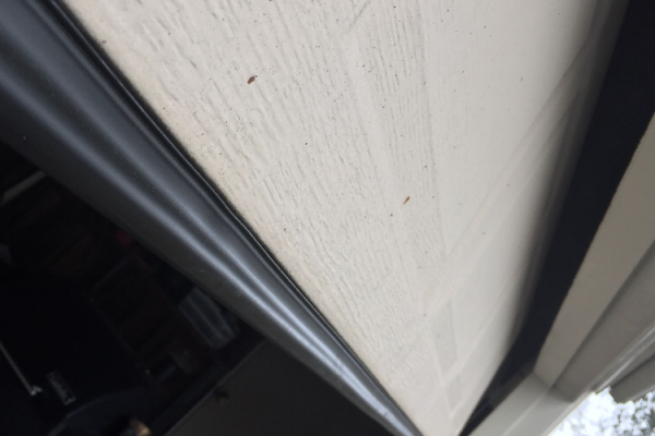 Weather Seal Replacement For Garage Door