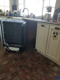 CHATSWORTH DISHWASHER LEAK