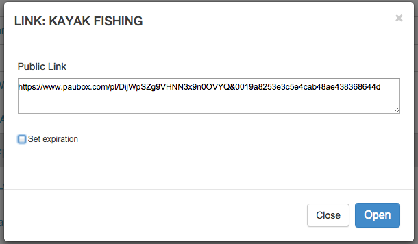 Paubox Expiring Encrypted Links screenshot1