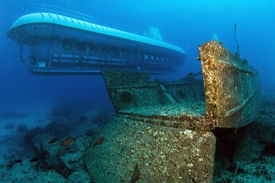 Atlantis Kona Submarine Adventure image 2
