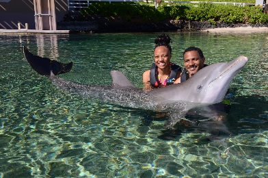 Product Dolphin Encounter