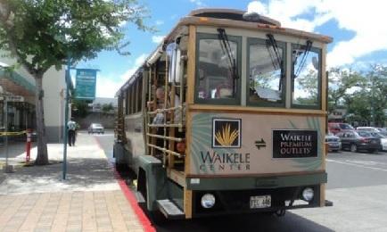 Product Waikele Shopping Trolley - 110B