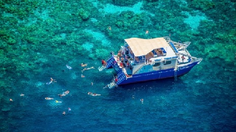 Product Kealakekua Bay Morning Snorkel Cruise