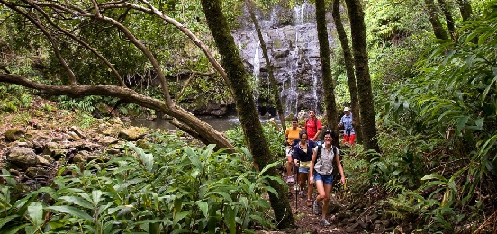 Product Waterfall Tour: Kohala Waterfalls Adventure