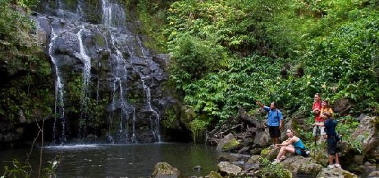 Product Waterfall Tour: Kohala Waterfalls Adventure