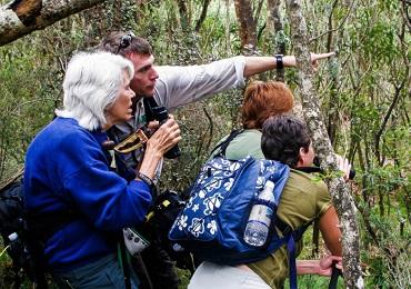 Product Endangered Native Habitats