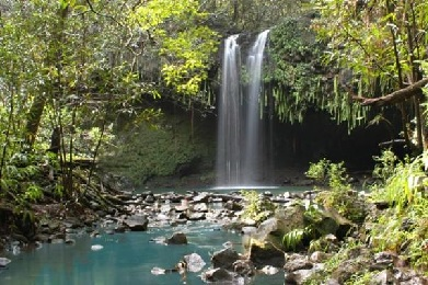 Product East Maui Waterfall and Rainforest Hike No Hotel Pick Up
