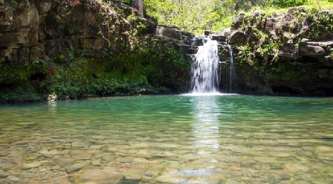 Product East Maui Waterfall and Rainforest Hike With Hotel Pick Up