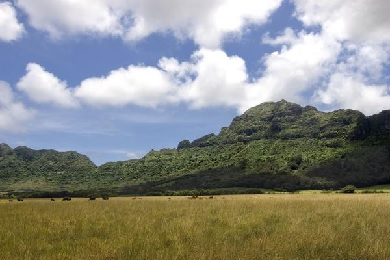 Ultimate Kipu Ranch Tour