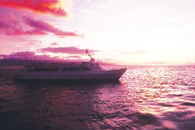 Product Maui Princess Dinner Cruise