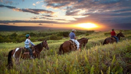 Horseback Ride - West Maui Sunset