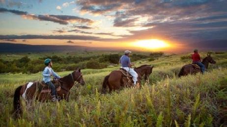 Product Horseback Ride - West Maui Sunset
