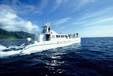 Product Catamaran Sail, Snorkel and Enjoy