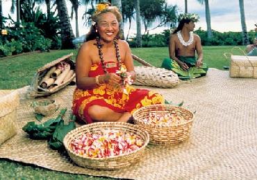 Product Paradise Cove Orchid Luau