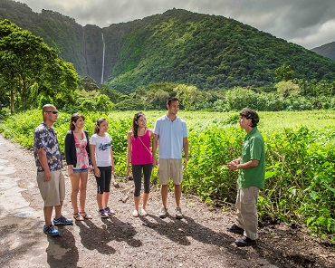 Waipio Valley & Hamakua Coast Tour