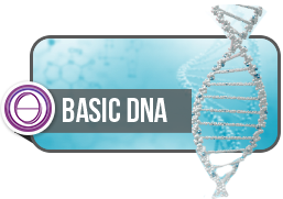ThetaHealing® Basic DNA & Advanced Course -October 2019 - Deposit