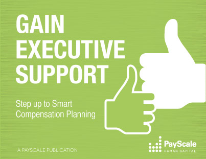 Gain Executive Support