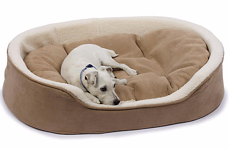 "Petco Oval Tan and Cream Lounger Dog Bed, 27"" L X 21"" W"