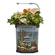 Top Fin® Aquaponics 2 Gallon Desk Aquarium
