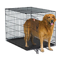 Midwest iCrate Single Door Folding Dog Crate, 24""