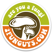 2funguys coupon codes