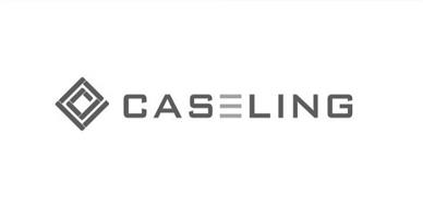 Caseling coupon codes