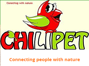 CHILIPET coupon codes
