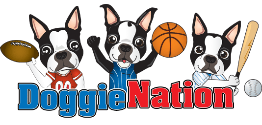 DoggieNation coupon codes