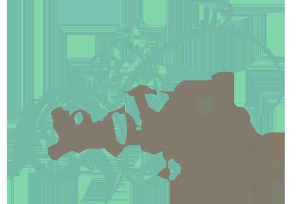 noVae Clothing coupon codes