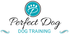 Perfect Dog coupon codes