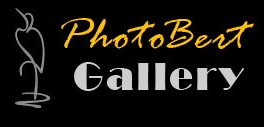 PhotoBert coupon codes