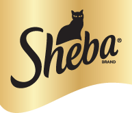 Sheba coupon codes