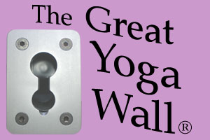 The Great Yoga Wall coupon codes