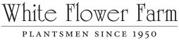 20 off white flower farm promo codes top 2018 coupons promocodewatch white flower farm coupon codes mightylinksfo