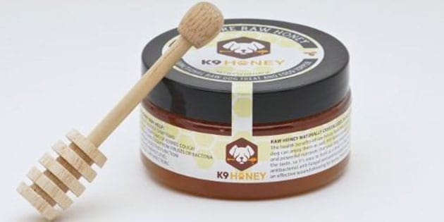 The Benefits of Honey for Dogs