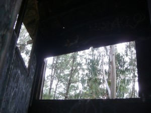 View from inside.