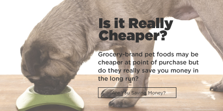 Cheaper Pet Product Alternatives