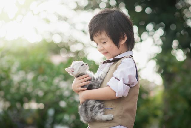 猫 抱っこ 方法 子猫