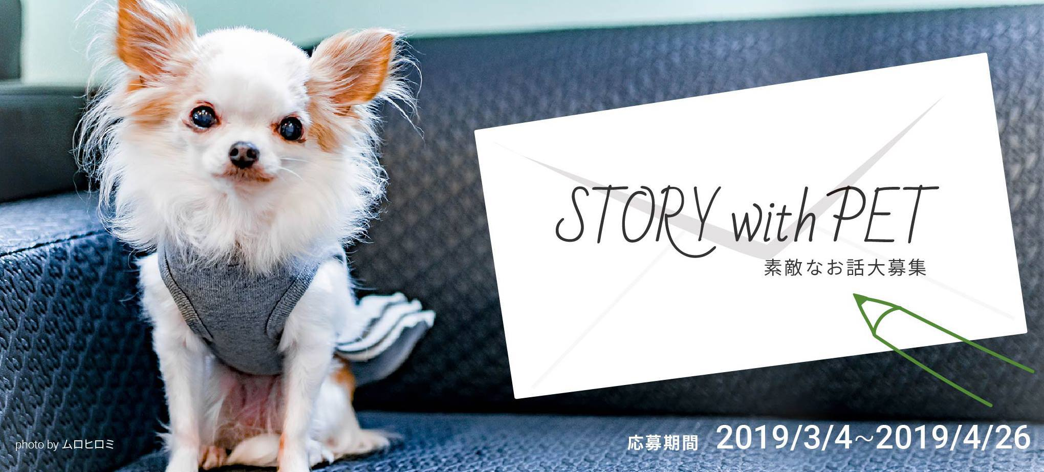 STORY with PET