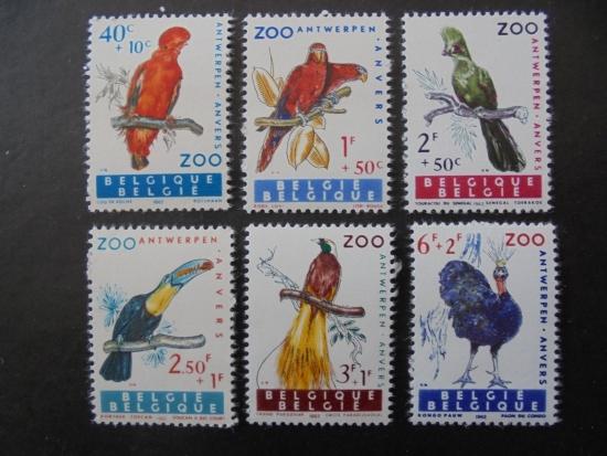 比利时的邮票:安特卫普动物园鸟(1962年)