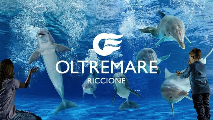 Acqua Dream Campus - Pesaro