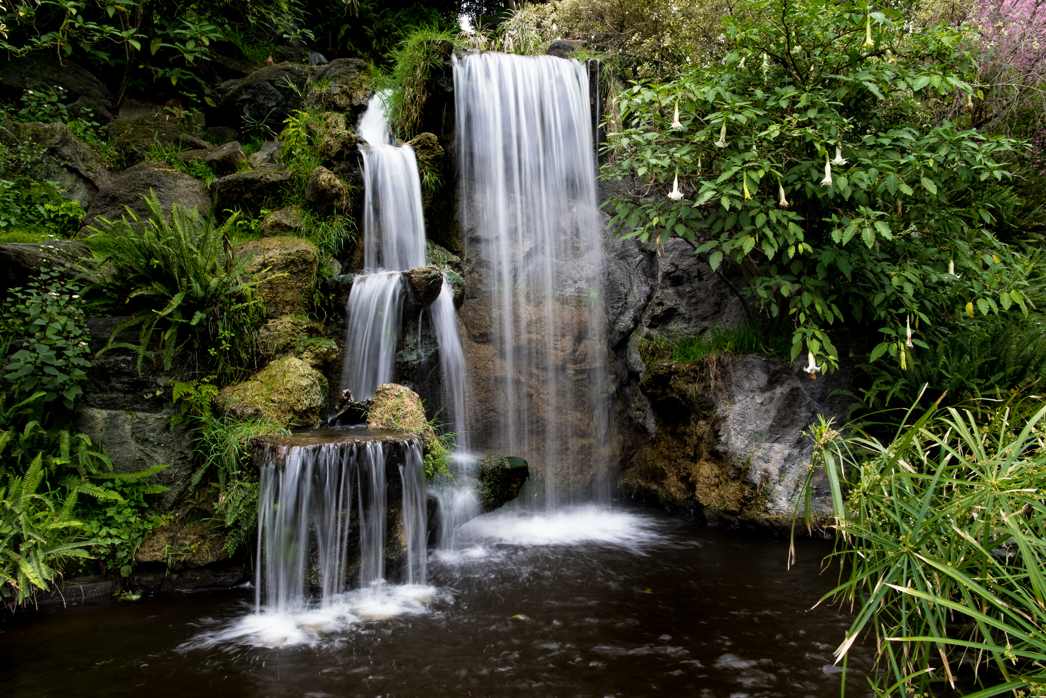 The Arcadia Arboretum Waterfall
