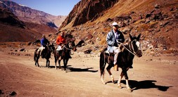 Horseback Riding El Morado Glacier and Hot Springs