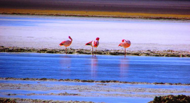 Santa Rosa Lagoon