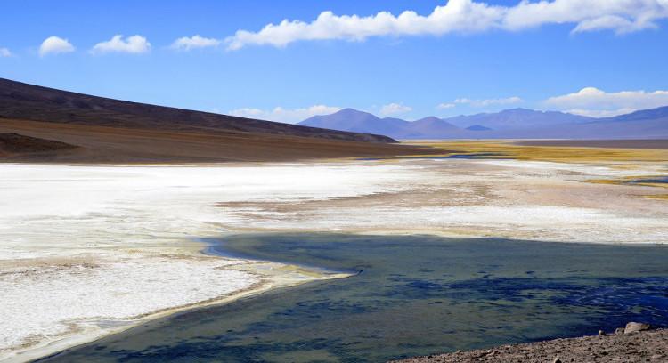 Maricunga Salt Flat