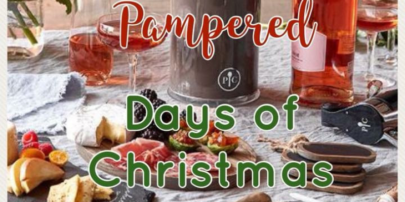 12 Days of Christmas Holiday Shopping