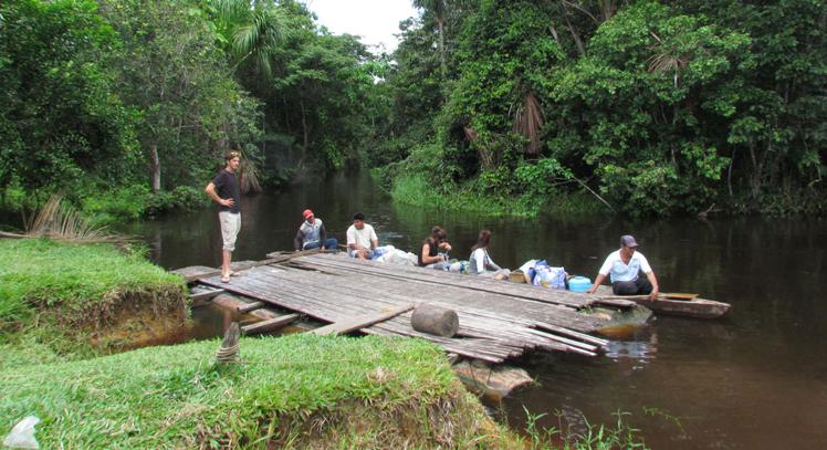 Tour por Amazonia