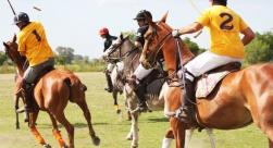 Dia de Polo e Churrasco