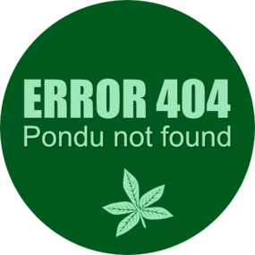 Error 404 pondu